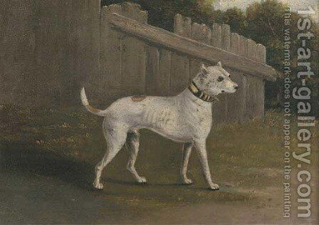 A bullterrier by a fence by (after) Francis Sartorius - Reproduction Oil Painting