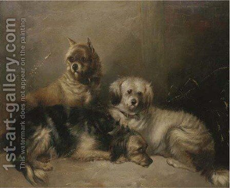 Three mischievous terriers by (after) George Armfield - Reproduction Oil Painting