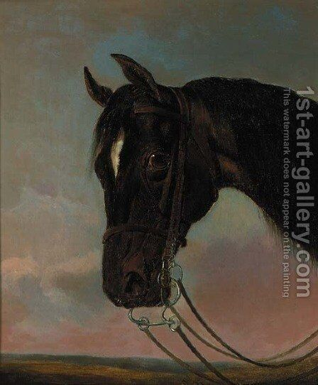The head of a bay hunter by (after) John Frederick Snr Herring - Reproduction Oil Painting