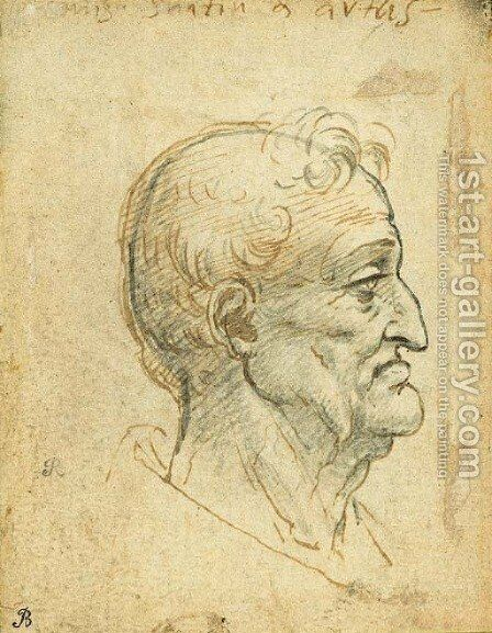The head of an old man in profile to the right by (after) Leonardo Da Vinci - Reproduction Oil Painting