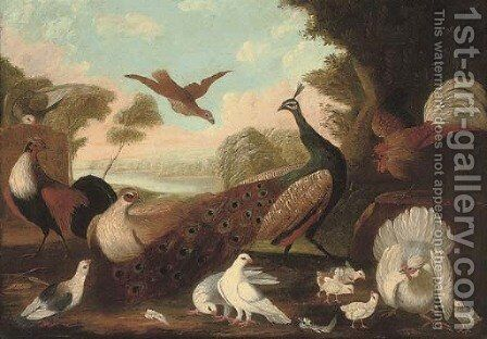 A peacock, a cockeral, a hen and her chicks, a grouse and other foul in a wooded river landscape by (after) Melchior De Hondecoeter - Reproduction Oil Painting