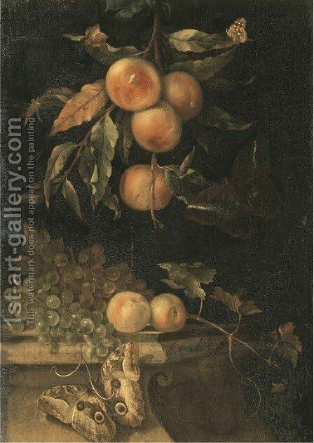 A still life with peaches and butterflies on a ledge by (after) Willem Van Aelst - Reproduction Oil Painting