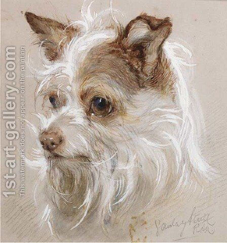 Mite, a terrier by Gourlay Steell - Reproduction Oil Painting