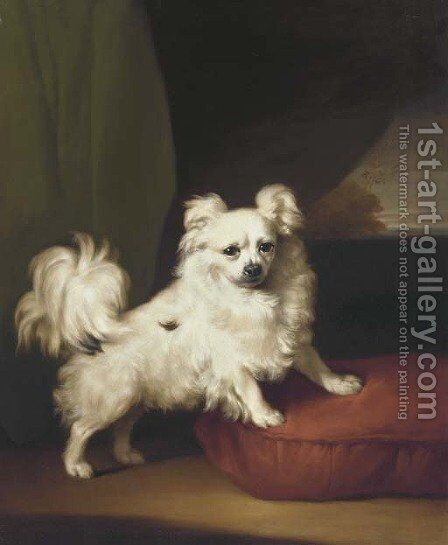 A White Papillon standing on a cushion by Henry Bernard Chalon - Reproduction Oil Painting
