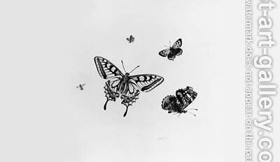 Studies of four Butterflies and an Insect by Herman Henstenburgh - Reproduction Oil Painting