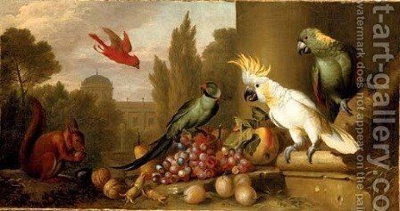 A Cardinal, a Plum-Headed Parakeet, a Lesser Sulphur-Crested Cockatoo, a Yellow-Naped Amazon by Jakob Bogdani Eperjes C - Reproduction Oil Painting