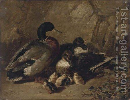 Ducks and ducklings by James Bradley - Reproduction Oil Painting