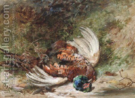 A shot pheasant by James Hardy Jnr - Reproduction Oil Painting