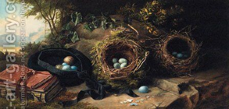 Bird's Eggs and Nests by James Russell Ryott - Reproduction Oil Painting