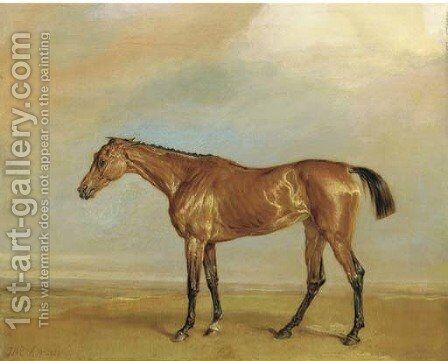 The Marquess of Exeter's Augusta, at Newmarket by James Ward - Reproduction Oil Painting