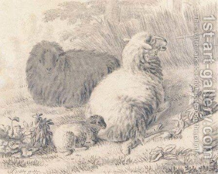 Sheep and a lamb in a meadow by Jan van der Meer - Reproduction Oil Painting