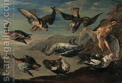 Birds of prey attacking herons and ducks by a pond by Jan van Kessel - Reproduction Oil Painting