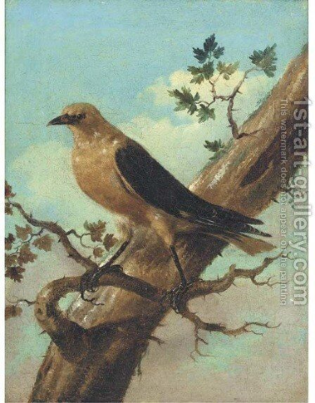 Bird On A Branch by Joham Matthias Wourzer - Reproduction Oil Painting