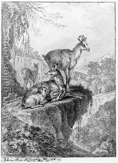 Chamois in a rocky wooded Landscape by Johann Elias Ridinger or Riedinger - Reproduction Oil Painting