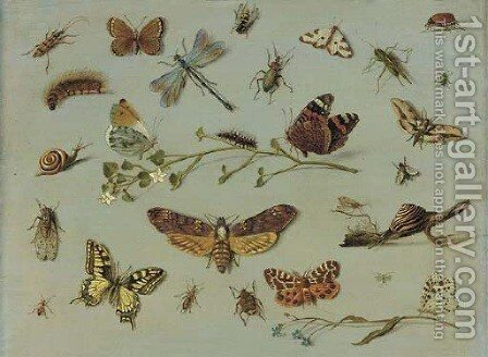 A death's head moth, a red admiral, a caterpillar and an orange-tip butterfly on a sprig of jasmine, a swallowtail butterfly, a garden tiger moth by Jan van Kessel - Reproduction Oil Painting