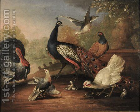 A Peacock, a Turkey, a Hen, Doves, Chicks and a Pheasant by a Lake by Marmaduke Cradock - Reproduction Oil Painting