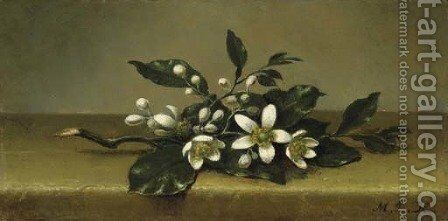 Branch of Orange Blossoms by Martin Johnson Heade - Reproduction Oil Painting