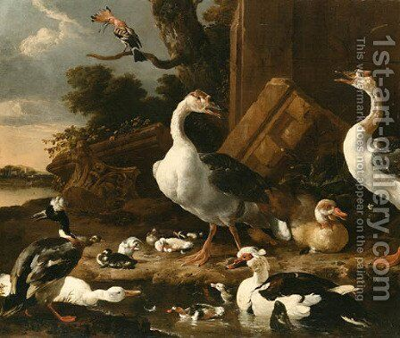 Chinese and Egyptian Geese by Melchior D'Hondecoeter - Reproduction Oil Painting