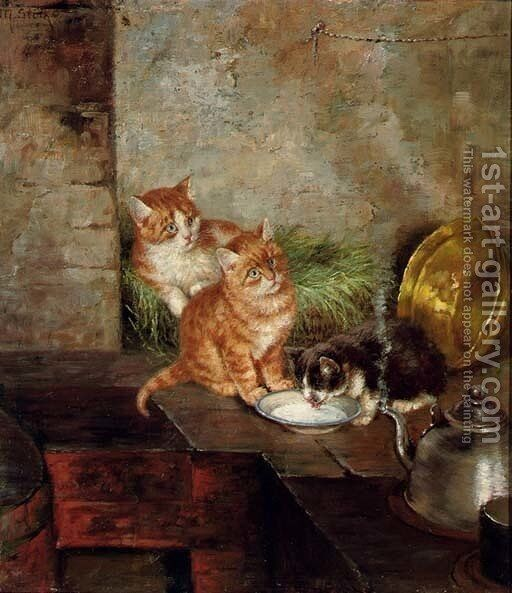 Three Cats In The Kitchen