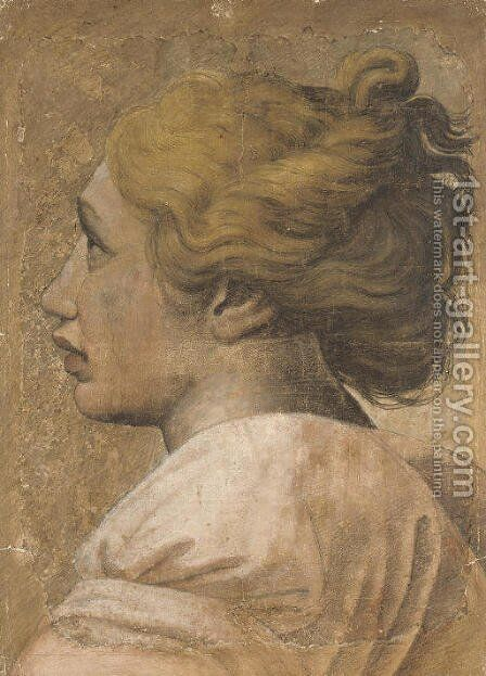 Head of a youth in profile to the left Cartoon for a tapestry by Raphael - Reproduction Oil Painting