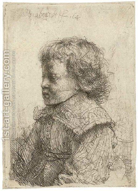 Portrait of a Boy, in Profile by Rembrandt - Reproduction Oil Painting
