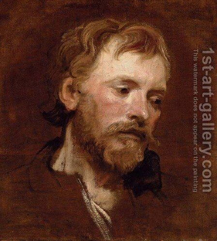 A bearded man, a study by Sir Anthony Van Dyck - Reproduction Oil Painting