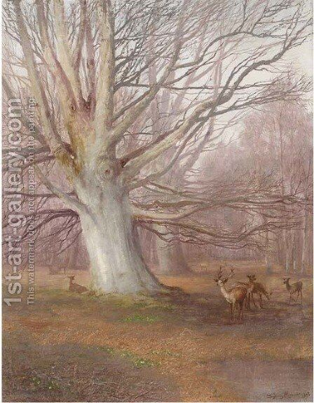 Deer in a beech wood by Sydney Herbert - Reproduction Oil Painting