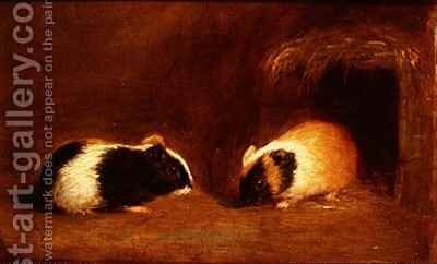 A Pair of Guinea Pigs by Edmund Bristow - Reproduction Oil Painting