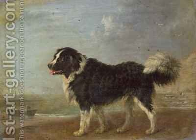 A Newfoundland dog on a seashore by Edmund Bristow - Reproduction Oil Painting