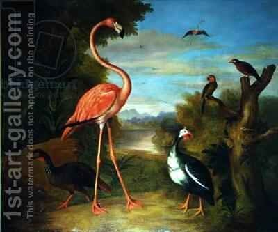 Flamingo and Other Birds in a Landscape by (after) Boggi, Giovanni - Reproduction Oil Painting