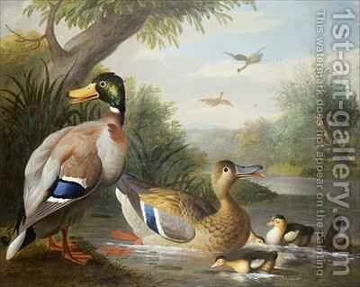 Ducks in a River Landscape by (after) Boggi, Giovanni - Reproduction Oil Painting