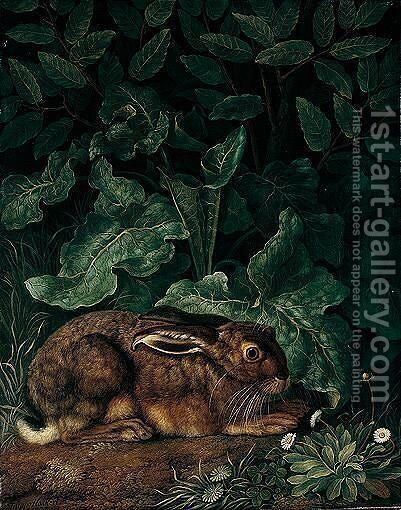 A Hare Surrounded By Foliage, Daisies And Clover In The Foreground by Jakob Philippe Hackert - Reproduction Oil Painting