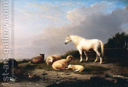 Horse, Sheep And Goat In A Landscape by Franz van Severdonck - Reproduction Oil Painting