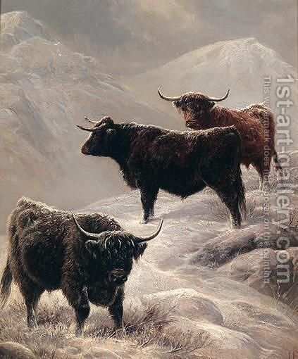 Highland Cattle On The Hills by Charles Jones - Reproduction Oil Painting
