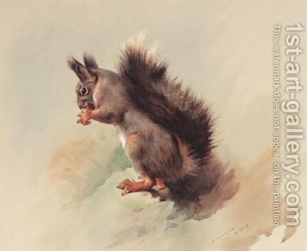 The Red Squirrel by Archibald Thorburn - Reproduction Oil Painting