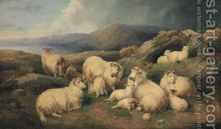 Sheep Resting by (after) John Morris - Reproduction Oil Painting