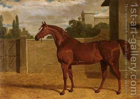 Comus, A Chestnut Racehorse In A Stable Yard by John Frederick Herring Snr - Reproduction Oil Painting