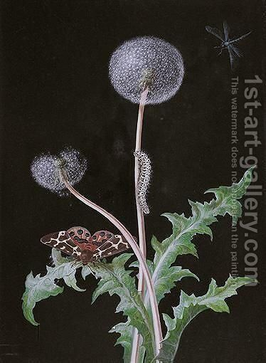 A Dandelion With A Butterfly And A Caterpillar by Barbara Regina Dietzsch - Reproduction Oil Painting