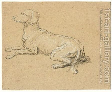 Study of a dog by Alexandre-Francois Desportes - Reproduction Oil Painting