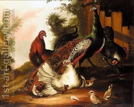 Peacock And Poultry In A Landscape by Charles Stuart - Reproduction Oil Painting
