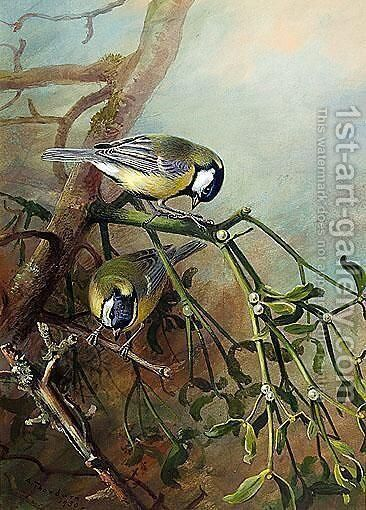 Blue Tits by Archibald Thorburn - Reproduction Oil Painting