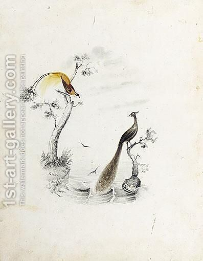Birds Of Paradise by Edward Lear - Reproduction Oil Painting