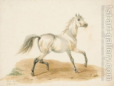Study Of A Horse by Carle Vernet - Reproduction Oil Painting