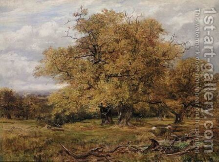Cadzow Forest, Autumn by James Docharty - Reproduction Oil Painting