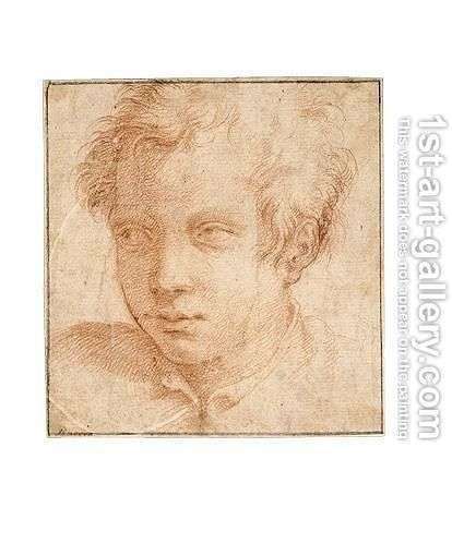 Portrait Of A Young Man by (after) Francesco De' Rossi (see Salviati, Cecchino Del) - Reproduction Oil Painting