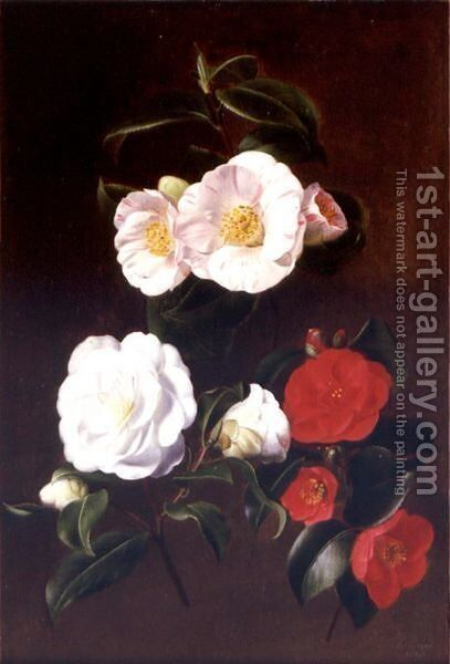 A Study Of Camellias by Antoine Chazal - Reproduction Oil Painting