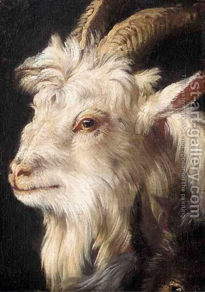 A Study For The Head Of A Goat by (after) Philipp Peter Roos - Reproduction Oil Painting