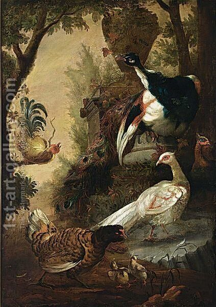 Peacocks And Other Birds In A Park Landscape by (after) Melchior De Hondecoeter - Reproduction Oil Painting