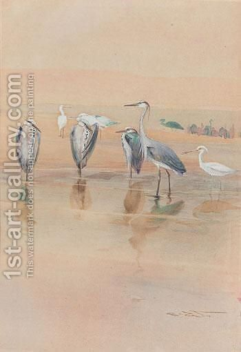 Herons by Charles Whymper - Reproduction Oil Painting