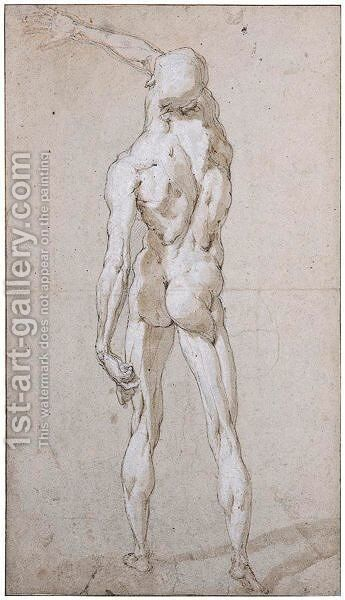 Male Nude Seen From Behind by Andrea Boscoli - Reproduction Oil Painting